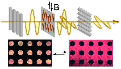 Let there be light: Chemists develop magnetically responsive liquid crystals