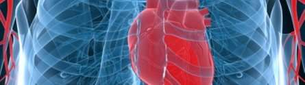 Making sense of genetic testing for heart disease