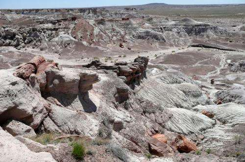 New evidence raises questions about when dinosaurs evolved in North America