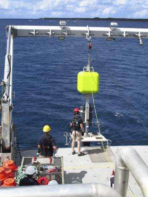 New species and surprising findings in the Mariana Trench