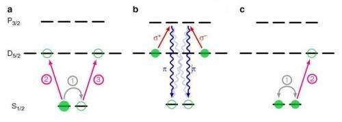 quantum network 2
