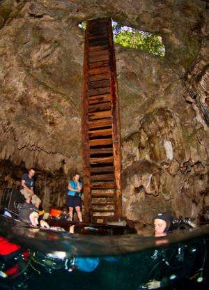 Skeleton found in Mexican cave yields clues about first human movement in Americas