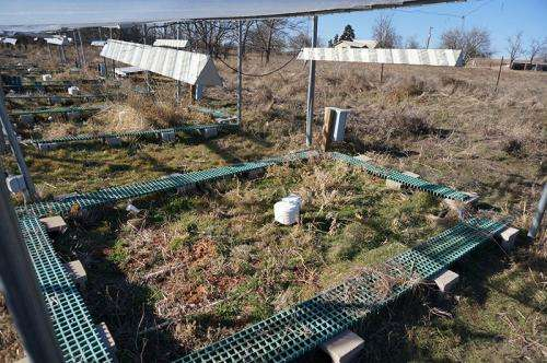 Soil microbes alter DNA in response to warming