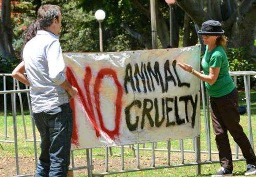 Supporters of animal rights display a banner against abuse of animals in Sydney on November 11, 2012