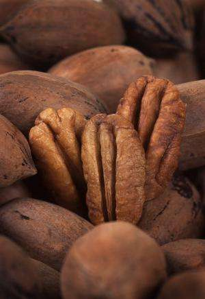 Survey reveals consumers' pecan preferences