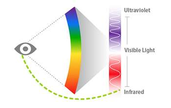 The Human Eye Can See Invisible Infrared Light