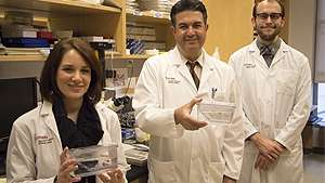 Zebrafish help researchers learn about cancer treatment