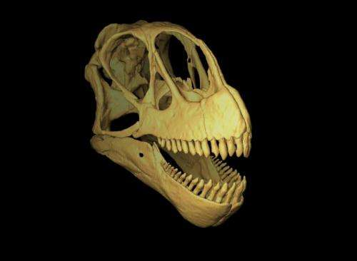 How dinosaurs divided their meals at the Jurassic dinner table