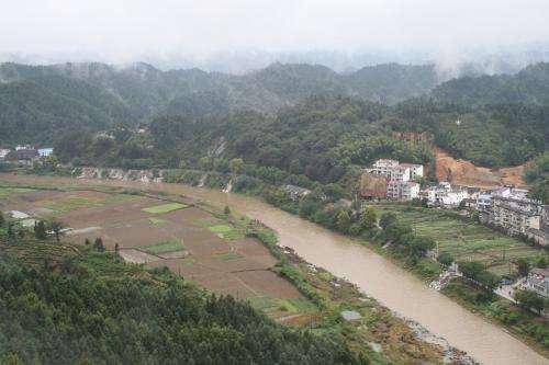 Deforestation threatens species richness in streams