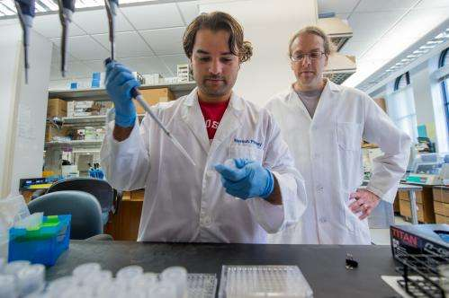 Scientists manipulate split proteins to detect interactions in living cells