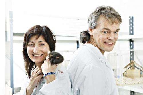 Scientists May-Britt Moser and Edvard Moser, pictured at the University of Science and Technology (NTNU) in Trondheim, Norway