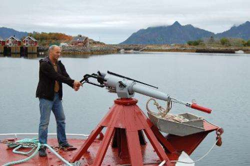 File picture shows a whale hunter demonstrating how to harpoon whales in the port of Svolvaer, Norway on August 20, 2008