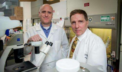 Scientists find potential drug targets in deadly pediatric brain tumors