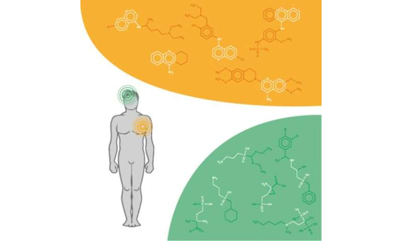 Researchers design a model to predict the effects  of chemical substances on health