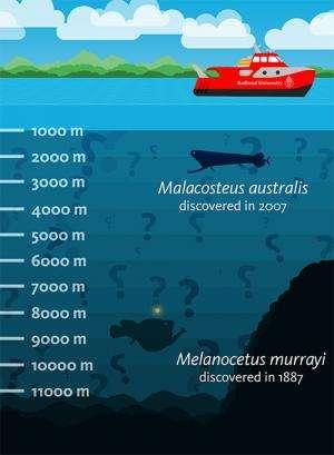 Better regulations needed for deep-sea biology