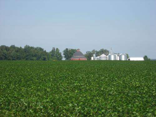 Building better soybeans for a hot, dry, hungry world