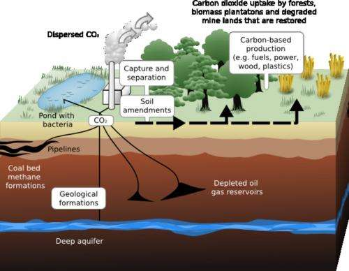 Carbon capture and storage — reality or still a dream?