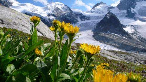 Climate changes the distribution of plants and animals