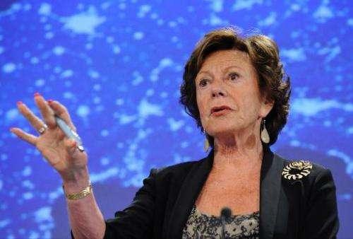 EU Commissioner for Digital Agenda, Neelie Kroes, speaks during a press conference in Brussels, on September 12, 2013