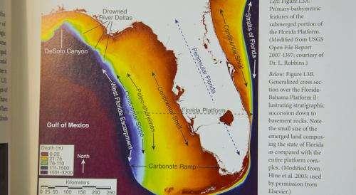 Geologic formation of Florida