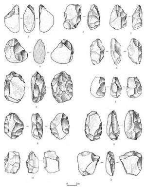 New palaeolithic artifacts discovered from loess deposits of Lantian, Central China