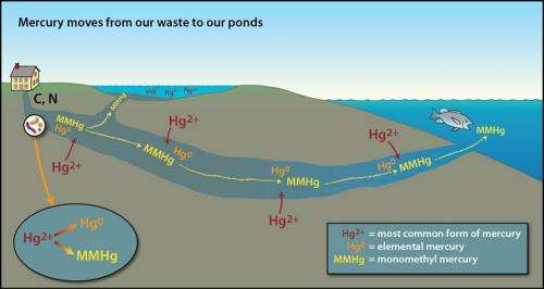 New research shows elevated mercury from in-ground wastewater disposal