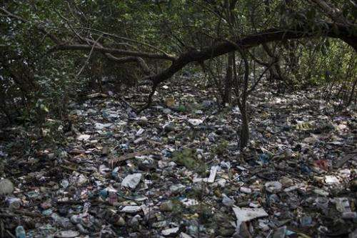 Sailing official wants tests for Rio pollution