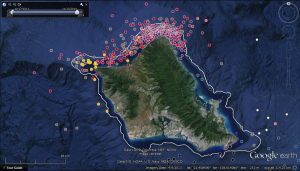 Study reveals tiger shark movements around Maui and Oahu