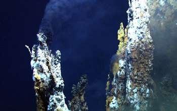 Undersea warfare: Viruses hijack deep-sea bacteria at hydrothermal vents