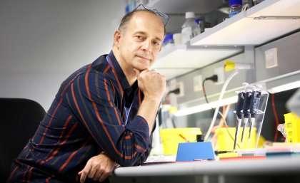 Researchers advance autism diagnosis
