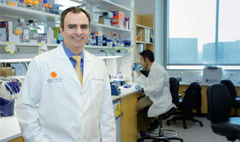 Researchers identify key mechanism in metabolic pathway that fuels cancers