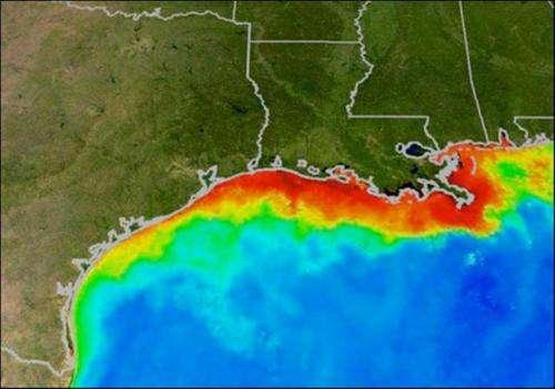 29603fed8f3b Researchers predict average Gulf of Mexico  dead zone