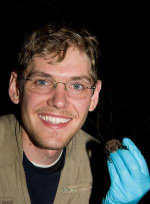 Researchers tap into social networks of endangered Indiana bat to aid in habitat management