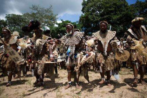 Members of the Shembe Church (Nazareth Baptist Church), a traditionalist Zulu church, dance in their leopard-skins to worship Go