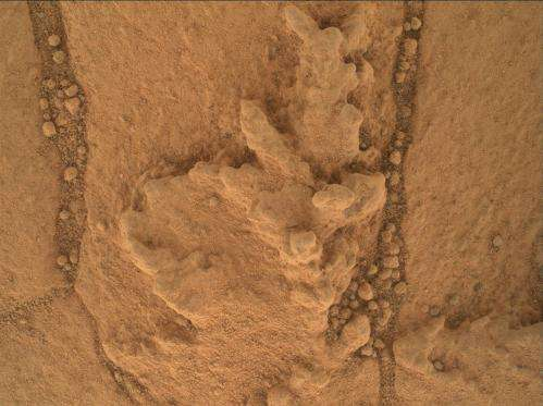NASA rover drill pulls first taste from Mars mountain