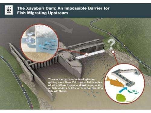 NGOs set one-year deadline to stop Xayaburi dam