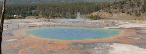 Yellowstone's thermal springs -- their colors unveiled