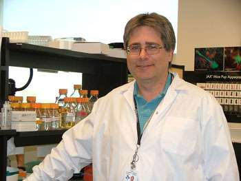 Researchers find gene critical for development of brain motor center