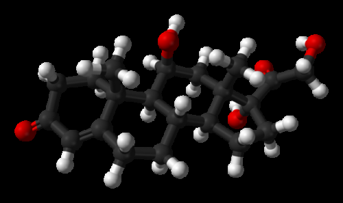 3D model of Cortisol