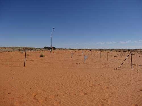 Sleeping sands of the Kalahari awaken after more than 10,000 years