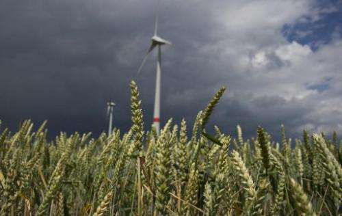 Wind turbines operate near a barley field in the town of Feldheim, Germany, June 20, 2011