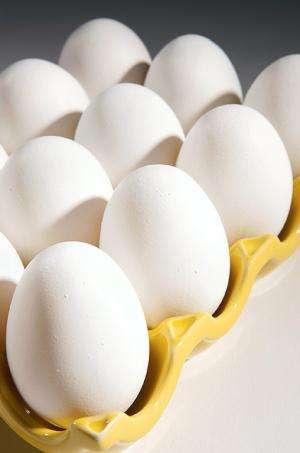 Researchers develop technique for pasteurizing raw eggs