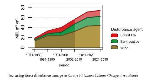 Climate change is fueling forest disturbances