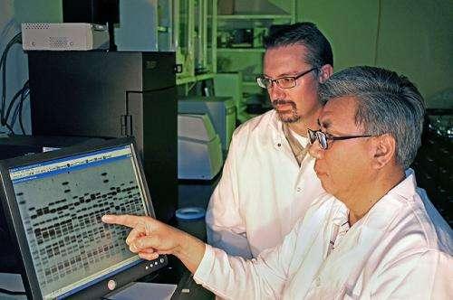 """Supershedders"" role in spreading E. coli scrutinized"