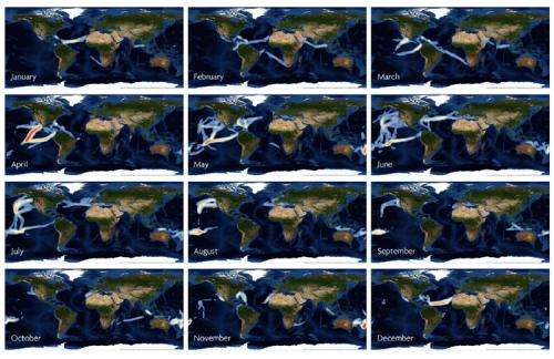 Citizen science model proposed to fill fundamental ocean data gap