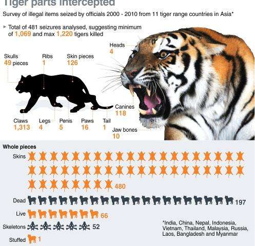 Graphic on the seizure of illegal tiger parts from 2000-2010