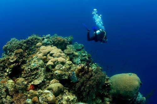 Uncovering the climate gases that control our tropical coasts