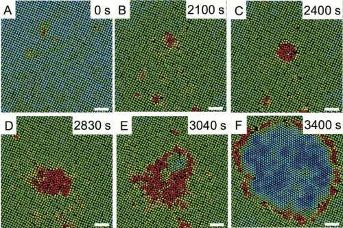 Penn research helps uncover mechanism behind solid-solid phase transitions