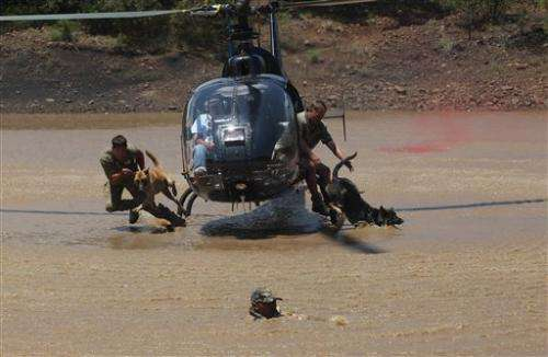 South African academy trains anti-poaching dogs