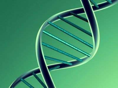 Researchers develop genetic profile of the Netherlands